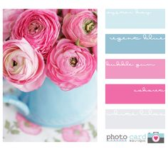 Photo Card Boutique image credit a creative mint