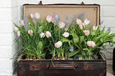 unelmientalojakoti,kukkaidea,helmililja,vanha matkalaukku,kukat