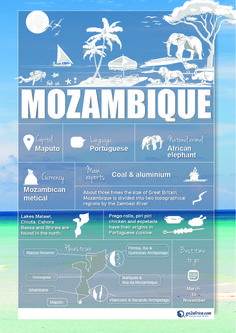 Mozambique Country Information infographic. #Africa #Travel