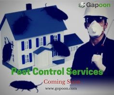 We are one of the leading ‪#‎online‬ service providers in ‪#‎Bangalore‬ offering various kinds ‪#‎services‬ and also effective ‪#‎pestcontrol‬ services like termite control, ‪#‎cockroach‬ control, ‪#‎mosquito‬ control, ‪#‎rat‬ control and for all other small ‪#‎insects‬. Website: https://www.gapoon.com/