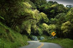 estrada da graciosa / PR-410