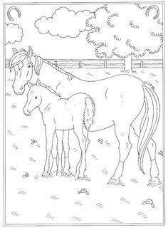 Kleurplaten Van Wilde Paarden.83 Inspirerende Afbeeldingen Over Kleurplaten Drawings Of Horses
