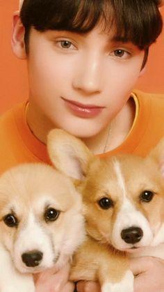 Kai with dogs😍😍 Kai, Fandom, K Pop, Anime Cat, March 4, The Dream, Pop Group, K Idols, Cute Wallpapers
