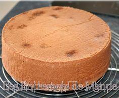 Recette MOLLY CAKE par manue12 - recette de la catégorie Pâtisseries sucrées