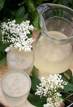 Elderflower cordial -- gotta do this! Elderberry Season, Table Setting Inspiration, Wedding Inspiration, Elderberry Flower, Cordial Recipe, Non Alcoholic Drinks, Beverages, Elderflower Cordial, Quirky Decor