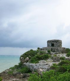 """85 Likes, 7 Comments - Migration Menu 🌎🍴 (@migrationmenu) on Instagram: """"Tulum overlooking the Caribbean Sea. One of few Mayan temples with an ocean view. 🌊🏞 #Mexico #tulum…"""""""