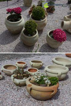 Keramické mísy a květináče do zahrady Plants, Plant, Planting, Planets