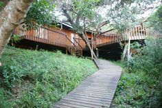 Buffalo Valley borders the Goukamma River and now offers three fully-equipped, self-catering timber lodges able to sleep between four and six people. Nature Reserve, Lodges, Garden Bridge, Wildlife, Deck, Outdoor Structures, River, Buffalo, Outdoor Decor