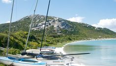 The West Coast National Park close to Langebaan is a pristine nature reserve in the Western Cape under SANParks (South African National Parks). Whale Watching, Cape Town, West Coast, Wild Flowers, Things To Do, National Parks, Tours, Google Search, Travel