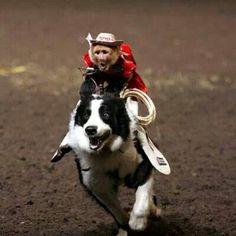Whiplash,  the cowboy monkey. Yeeeehawww!!!