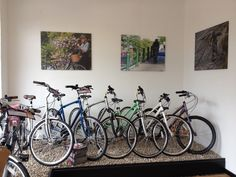 Bike canvas photos at Cyclelife Shoreham