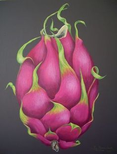 Image result for dragon fruit art