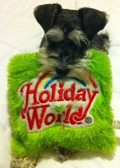 PUPPY AND A HOLIDAY WORLD PILLOW! This is the best. I love Holiday World!