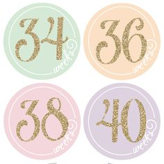 Pregnancy sticker belly stickers gold stickers by pennyandprince