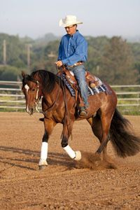 Master this exercise to gain control of your horse's shoulders (those ornery things!) and hips.