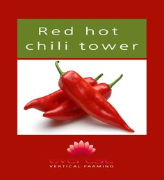 Red hot chili tower  EVEREST - Vertical Farming