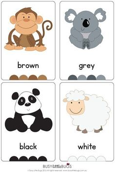 """This delightful set of  """"Colour Animal Flash Cards"""" are a great learning tool for any little one learning their colours.  You'll find 12 brightly coloured flash cards in this set, ready to print and play."""