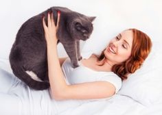 Learn why cat people don't understand dog people. By certified cat and dog behaviorist, Arden Moore. People Dont Understand, Cat Behavior, Cat People, Young Women, Fur Babies, Cat Lovers, Dog Cat, Pets, Mad