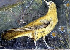 Incredibly preserved art from Pompeii. Ancient Pompeii, Pompeii And Herculaneum, Ancient Art, Ancient History, Art History, Art Ancien, Roman Art, Tempera, Ancient Civilizations