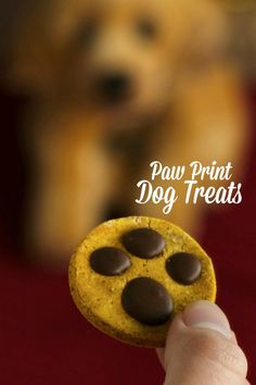 Paw Print Dog Treats Red Hot Holiday Trends - Bow wow! These super cute, extra-easy treats—featuring paw prints made with melted carob and peanut butter—will be your pup's new favorite.Homemade dog treats for your bestie!
