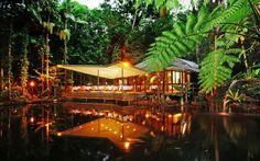 Rohkea yöpyy viidakossa - kuusi hotellia, joissa asuminen on elämys