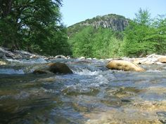 1000 Images About Hill Country Camping On Pinterest