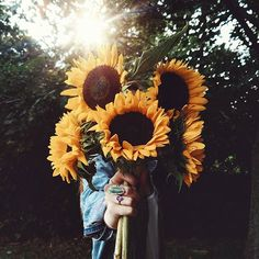 Sunflowers make my soul happy. #Regram via @ktnewms