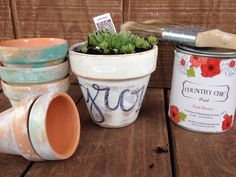 Loveleigh Creative Soul uses Country Chic paint to create an easy to follow painting terra-cotta pots tutorial, step by step chalk paint project.