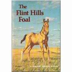 The Flint Hills Foal Horse Books, Dog Books, Animal Books, Children's Books, Books To Read, Vintage Books, Vintage Posters, Horse Story, Flint Hills