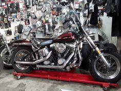 eBay: 1986 Harley-Davidson FXSTC SOFTAIL CUSTOM HARLEY SOFTAIL CUSTOM NO RESERVE!!!! #harleydavidson