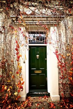 Autumn front door - dark green with brass door knocker and hardware, dentil stone moulding, leaves
