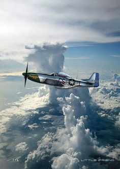 Beautiful P-51 Mustang