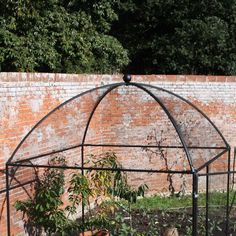 Classic dome shaped fruit cages.