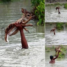 Faith in humanity restored..