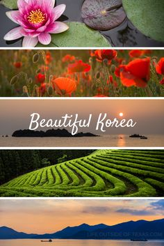 Beautiful Places to Visit in Korea <3