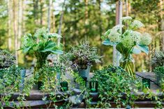 Green wild flowers and foliage - Image by Therese Winberg Photography - A forest green wedding colour scheme at an intimate outdoor coastal ceremony in Finland with DIY wedding dress, flowers and stationery