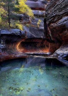 Pool of Hope, Zion National Park, Utah, USA