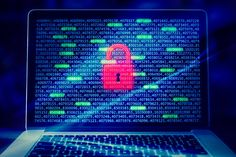 All businesses can suffer great losses in the event of cyber attacks. Here are some of the most common network security risks that you should be aware of.
