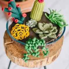 Free Crochet Pattern for Succulents Plants Crochet Food, Cute Crochet, Crochet Yarn, Crochet Flowers, Crochet Stitches, Diy Crochet Cactus, Fleur Crochet, Crochet Cactus Free Pattern, Crochet Patterns