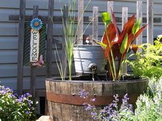 Whiskey barrel fountain and pond plants
