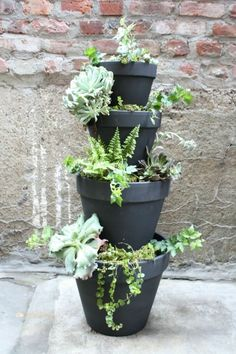 Planterfall garden plants gardening garden ideas garden projects plant pots