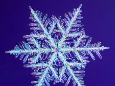 i love snowflakes, might use this to add to my snowflake tattoo