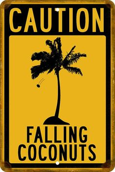Caution Falling Coconuts Sign 12 x 8 by Travelsigns on Etsy