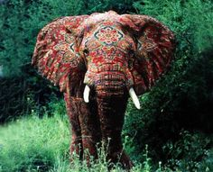 A very thoughtful elephant...source lost in a maze of sites, all pointing back to more, and more,,,perhaps ending in the original rug maker who tiedyed this beast in the jungle.
