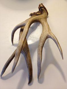 Vintage Deer Antlers. $55,00, via Etsy.