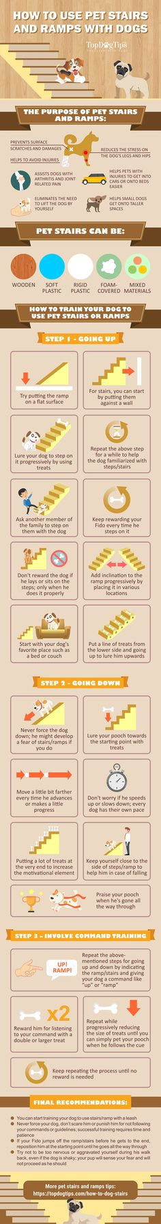 How to Train Dogs to Use Pet Stairs and Ramps [Infographic]