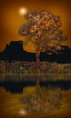 2612 by peter holme iii on 500px