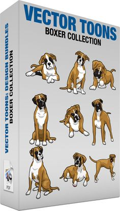 Boxer Collection #alert #animal #attentive #black #box #boxer #bundle #calm #canine #Canisfamiliaris #Canislupusdomesticus #Canislupusfamiliaris #clipart #Collection #curious #dog #dogbreed #domesticdog #energretic #mammal #man'sbestfriend #package #payingattention #pdf #playful #resting #set #shorthair #sitting #stocky #tailwagging #tan #tongueout #vector #vectors #white #vector #clipart #stock
