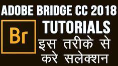 Adobe Bridge CC 2018 All Information Tutorials in Hindi