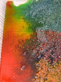 Magic Color Changing Rice ~ Growing A Jeweled Rose